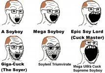 soyboys.jpeg