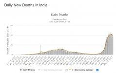 india_deaths.jpg