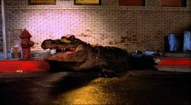 Alligator-1980.jpg